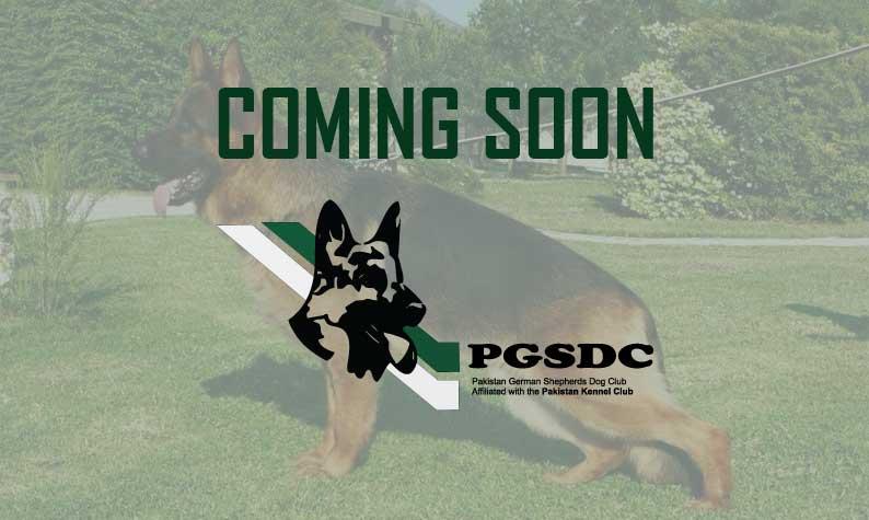 Show Results | Pakistan German Shepherd dog Club